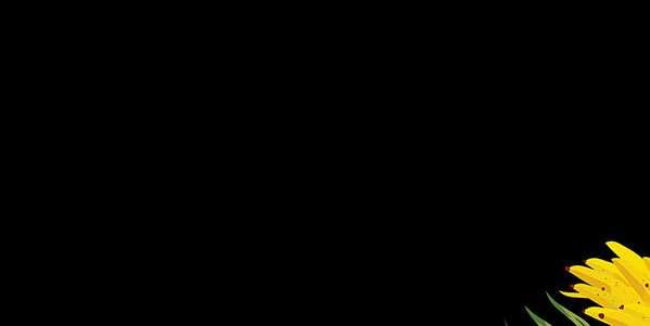 20190422-HOMEPAGE-BANNERPRINCIPAL-MOBILE-LIQUIDA-P24-CALCADOS